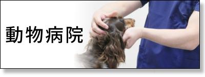 獣医、アニマルクリニック、動物病院、ペットサロン、ペットトリマー向けスクラブ